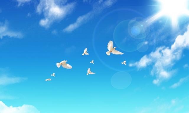 心をもっと楽に、もっと自由に、思った通りの人生を手に入れる方法
